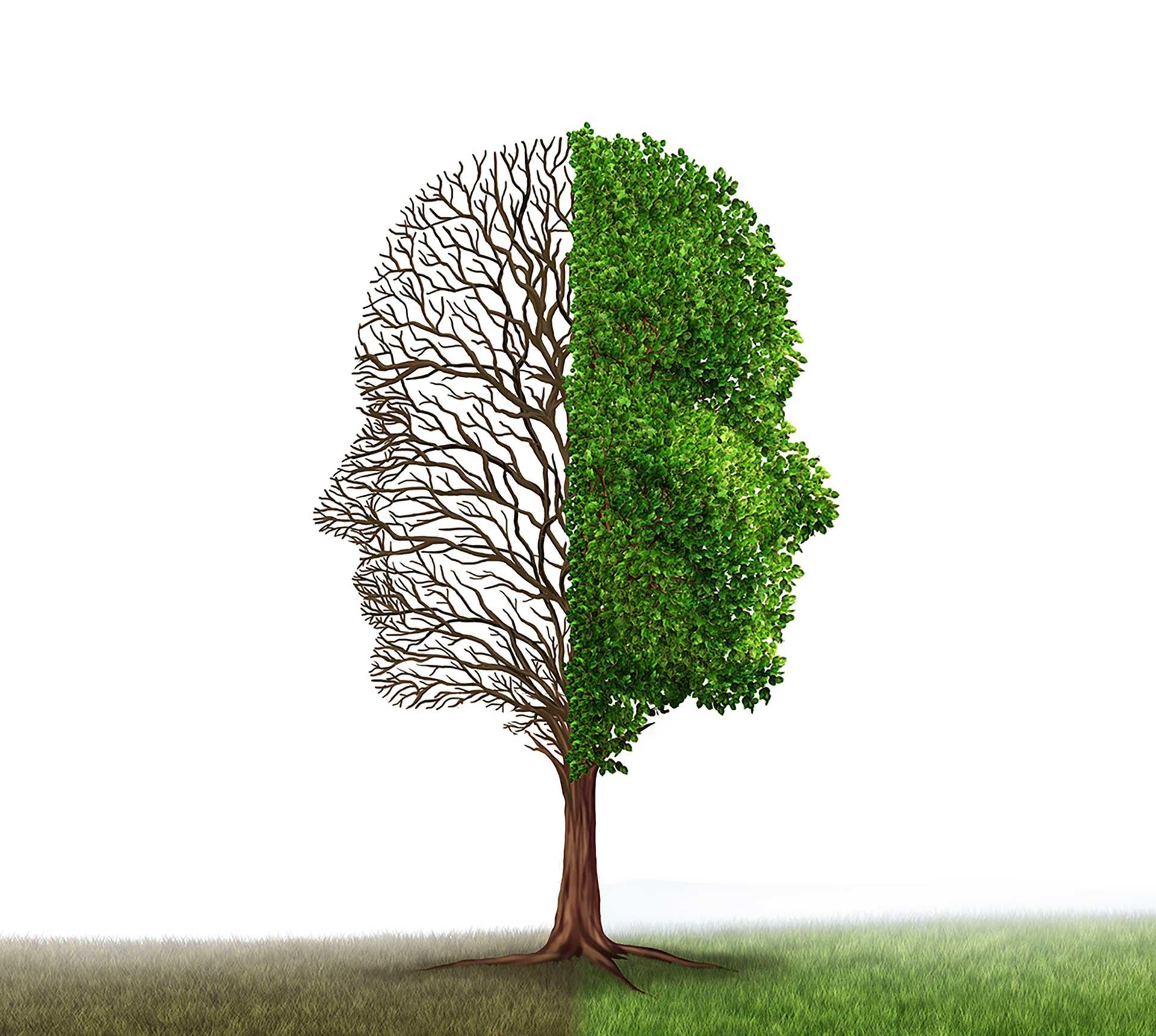 Mendësia e fiksuar apo e rritjes, cila ndikon më pozitivisht në punë?